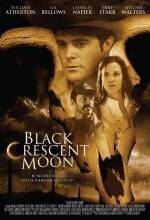 Buy and download thriller genre movy trailer «Black Crescent Moon aka bgFATLdy» at a tiny price on a high speed. Write your review on «Black Crescent Moon aka bgFATLdy» movie or find some amazing reviews of another fellows.
